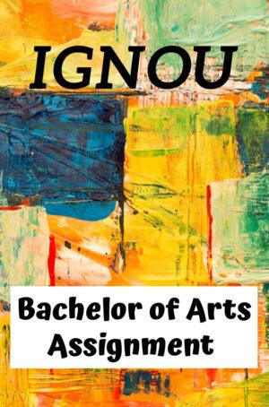 Bachelor of Arts Assignment (BAG)