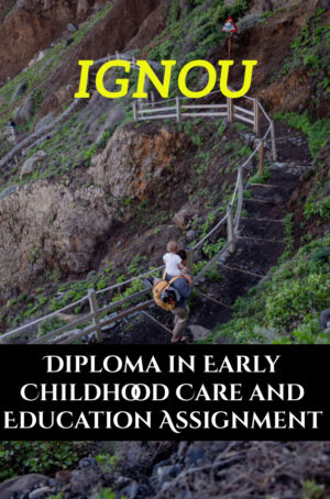 Diploma in Early Childhood Care and Education Assignment (DECE)