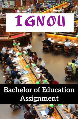 Bachelor of Education Assignment (B.Ed)