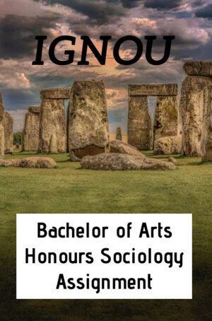 Bachelor of Arts Honours Sociology Assignment (BASOH)