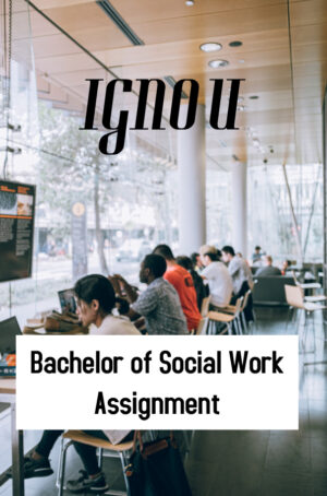 Bachelor of Social Work Assignment (BSW)