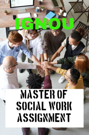 Master of Social Work Assignment (MSW)