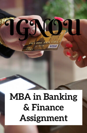 MBA in Banking & Finance Assignment (MBA B&F)